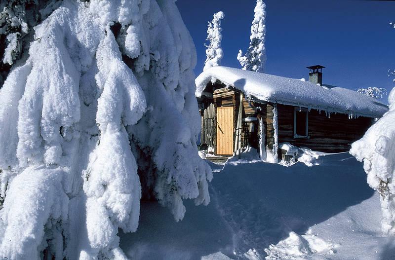 Lappischer Zen: Power-Blockhütting, Extreme-Schwitzing & Snow-Peeling (Foto: VisitFinland)