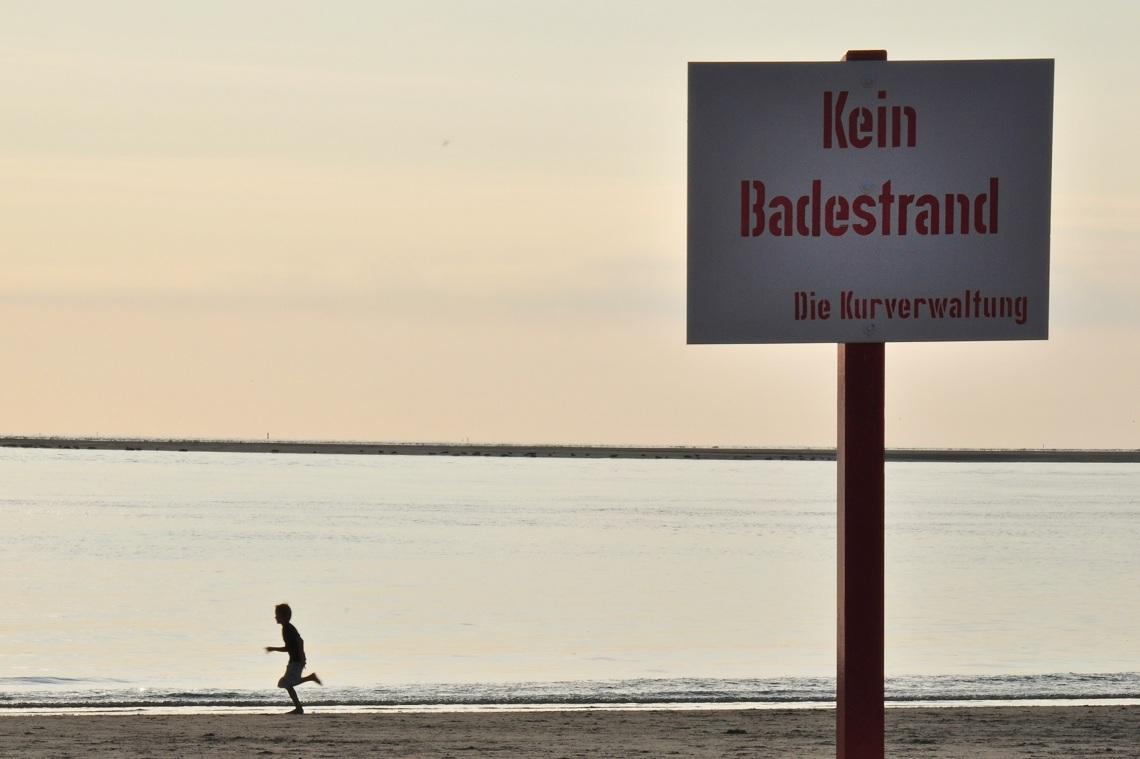 Jagdszenen auf Borkum: Der rosa Riesendarm (nicht im Bild) greift an (Foto: Munich Globe Bloggers)