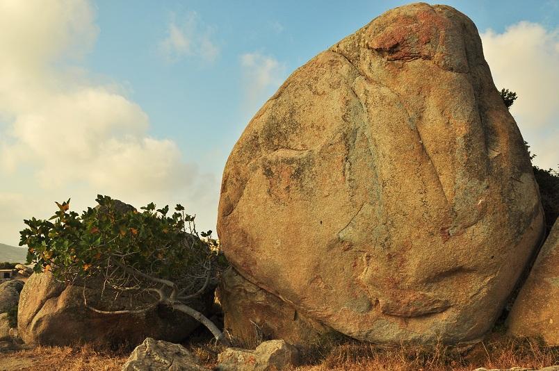 Like it! Stonefacebook alias das Orakel von Volax (Foto: Munich Globe Bloggers)